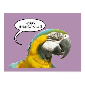 Cartão engraçado do aniversário do papagaio de cartão postal
