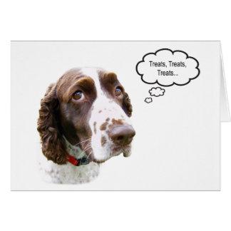 Cartão engraçado do deleite do Spaniel de Springer