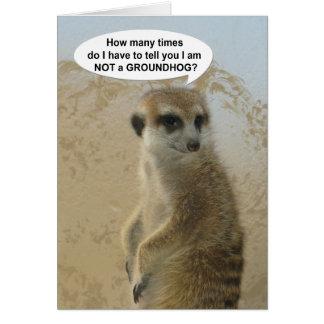 Cartão engraçado do dia de Meerkat Groundhog
