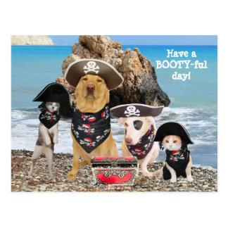 Cartão engraçado do dia do pirata do animal de
