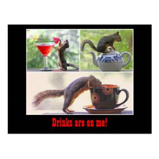 Cartão engraçado do esquilo cartão postal