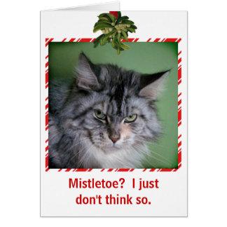 Cartão engraçado do Natal do visco do gato