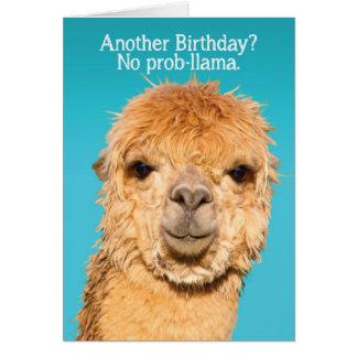 Cartão Engraçado nenhuma sabedoria do aniversário do lama
