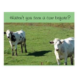 """Cartão engraçado, """"você viu uma vaca antes? """""""