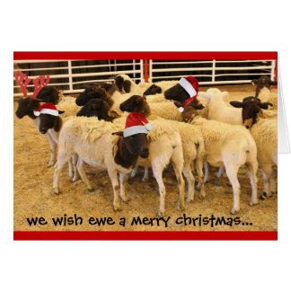 Cartão engraçado, Xmas da feliz da ovelha do