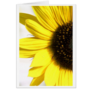 Cartão Enviando alguma luz do sol