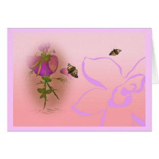 Cartão Ervilha doce do elve do Lathyrus