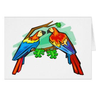 Cartão Escarlate dos Macaws