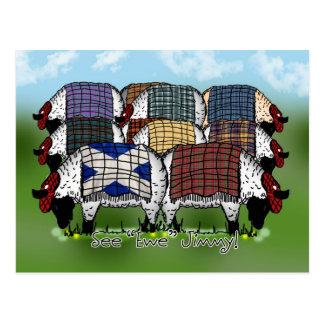 Cartão escocês dos carneiros - veja a ovelha Jimmy