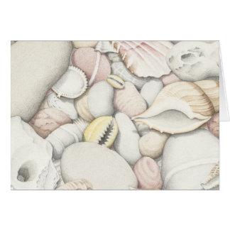 Cartão Escudos e seixos do mar no lápis colorido