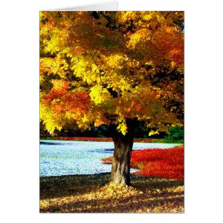 Cartão Esplendor do outono