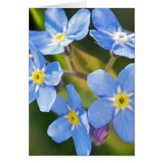Cartão esqueça-me não obrigado romântico das flores você