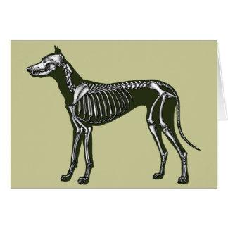 Cartão Esqueleto de great dane