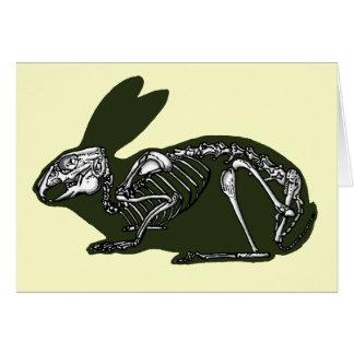 Cartão esqueleto do coelho