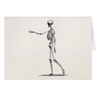 Cartão Esqueletos antigos de esqueleto da anatomia dos