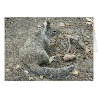 Cartão Esquilo bonito da desculpa do bocado da desculpa