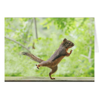 Cartão Esquilo bonito que faz o qui da TAI