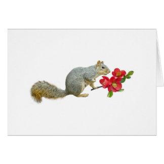 Cartão Esquilo com flores do marmelo