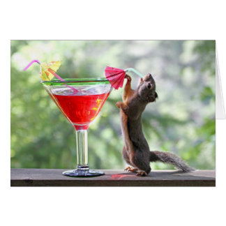 Cartão Esquilo que bebe um cocktail no happy hour