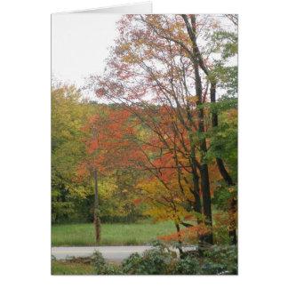 Cartão Estrada 2 do outono