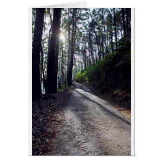 Cartão Estrada secundária através da floresta