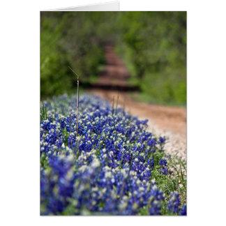 Cartão Estrada secundária no notecard do primavera