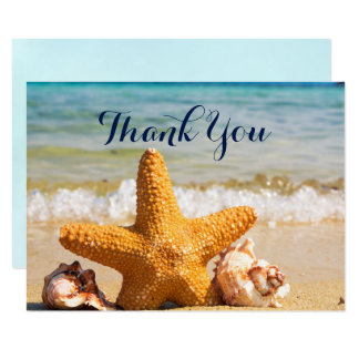 Cartão Estrela do mar e Seashells no obrigado da praia