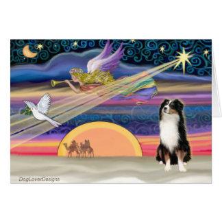 Cartão Estrela do Natal - pastor australiano (tri)