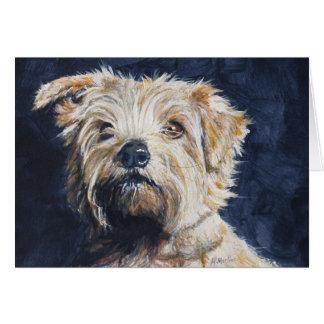 Cartão Estudo da cabeça de Norfolk Terrier