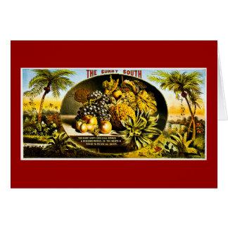 Cartão Etiqueta 1874 ensolarada do charuto do vintage do