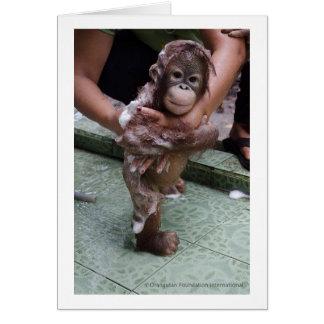Cartão Eu amo o bebê Jackat dos orangotango