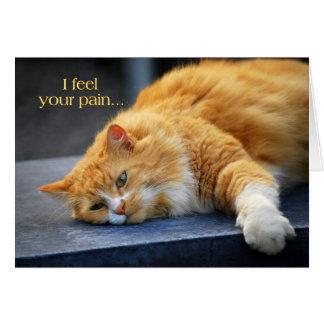 Cartão Eu sinto sua dor -- Gato logo alaranjado do