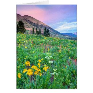 Cartão EUA, Colorado, montículo com crista. Paisagem 2