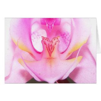 Cartão extremo próximo acima do interior de uma flor da