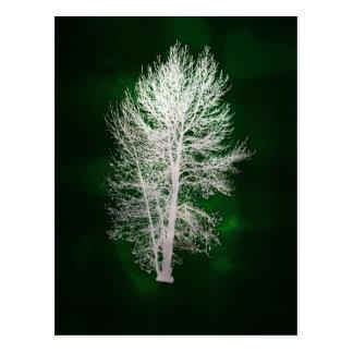 Cartão falso-metálico verde da árvore