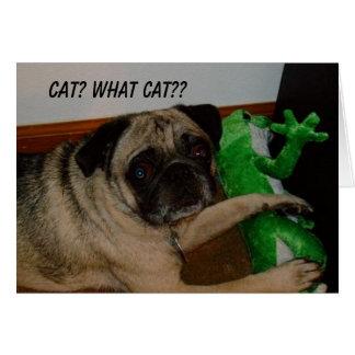 Cartão faltante do gato