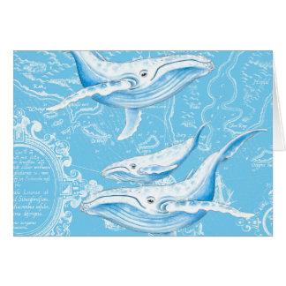 Cartão Família das baleias azuis