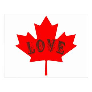 Cartão feito sob encomenda do amor da bandeira de