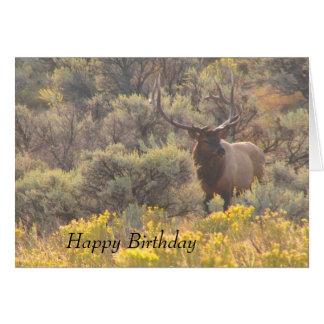 Cartão feito sob encomenda do feliz aniversario