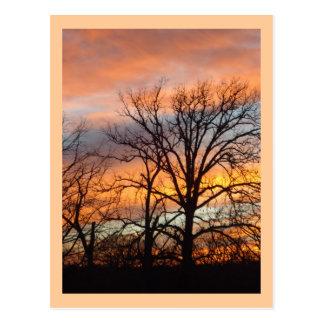 Cartão feito sob encomenda do por do sol 1 do
