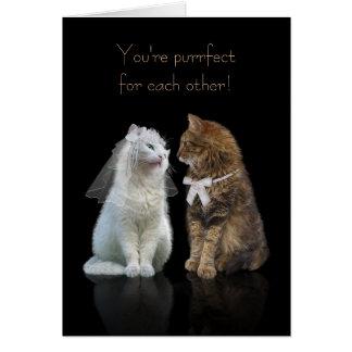 Cartão Felicitações Wedding/noivado para amantes do gato