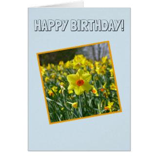 Cartão Feliz aniversario! Daffodils amarelos alaranjado