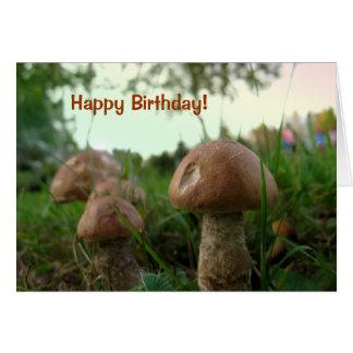 Cartão Feliz aniversario de cogumelos de campo