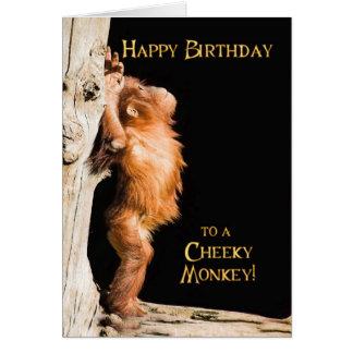 Cartão Feliz aniversario de um orang do bebê utan