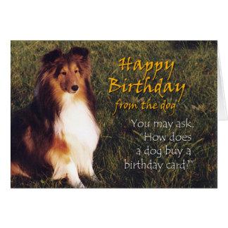 Cartão Feliz aniversario do cão