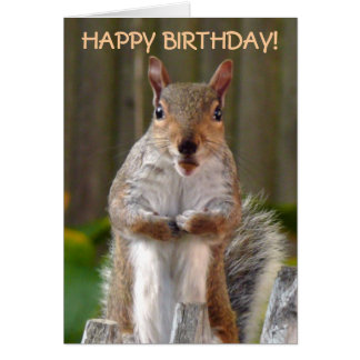 Cartão Feliz aniversario do esquilo bonito