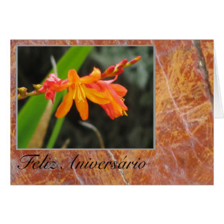 Cartão: Feliz Aniversário - flor alaranjada Cartão Comemorativo