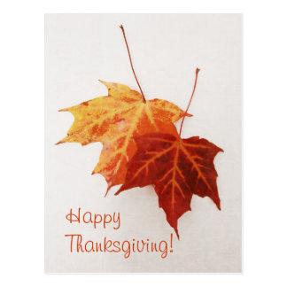 cartão feliz da acção de graças de duas folhas de