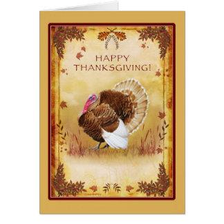 Cartão feliz da acção de graças de Turquia