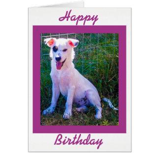 Cartão feliz de Brithday